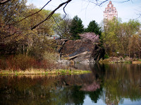 At Turtle Pond, Central Park